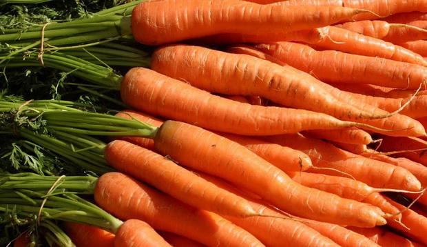Сорт моркови: Детская