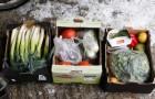До 30 % овощей и фруктов выбрасываются за некрасивый вид