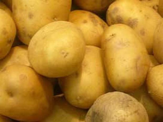 Сорт картофеля: Эл мундо