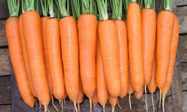 Сорт моркови: Элеганс   f1