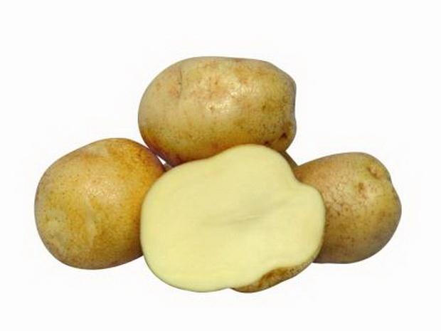 Сорт картофеля: Евростарч