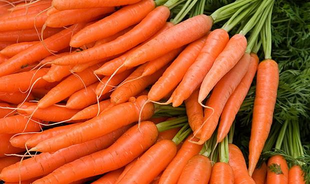 Сорт моркови: Факел