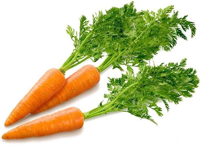 Сорт моркови: Кампо
