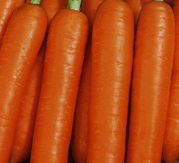 Сорт моркови: Карамелька