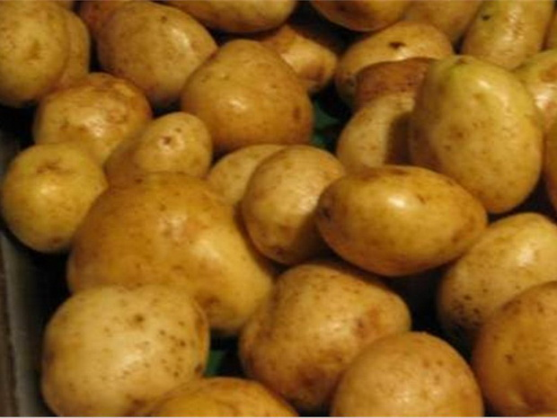 Сорт картофеля: Карлингфорд