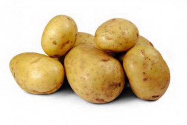 Сорт картофеля: Коломба
