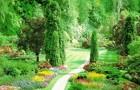 Краски будущего сада