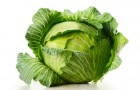 Сорт капусты белокочанной: Кубаночка