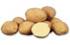 Сорт картофеля: Леди клэр