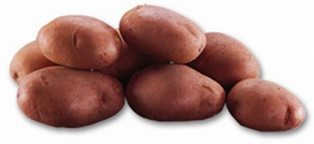 Сорт картофеля: Леди розетта
