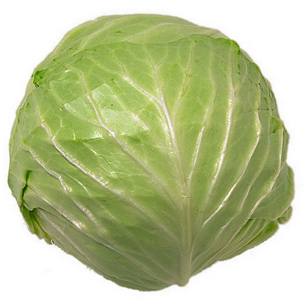 Сорт капусты белокочанной: Мишутка   f1