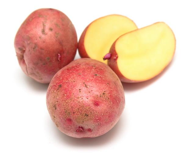Сорт картофеля: Москворецкий