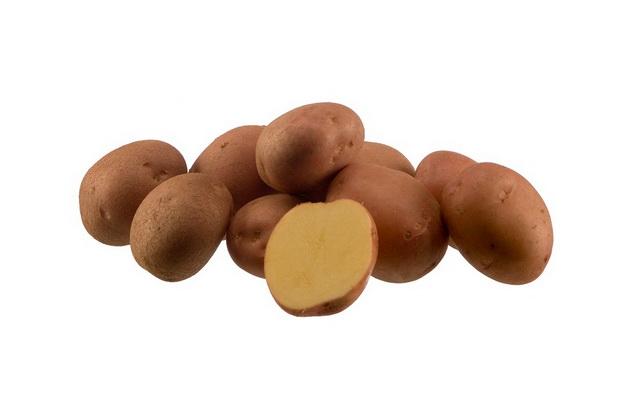 Сорт картофеля: Мустанг