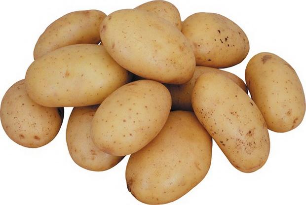 Сорт картофеля: Надежда