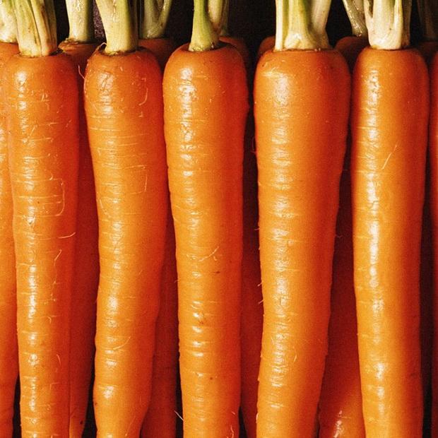 Сорт моркови: Наталья   f1