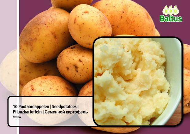 Сорт картофеля: Наван