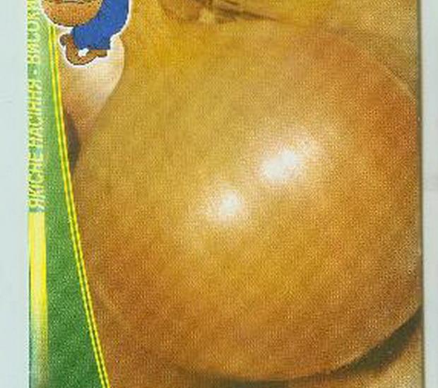 Сорт лука репчатого: Олина