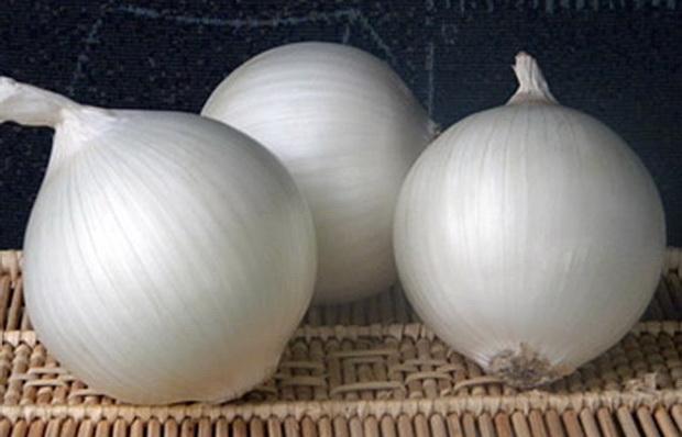 Сорт лука репчатого: Оризаба   f1