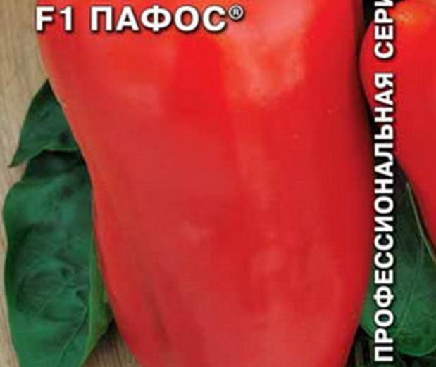 Сорт перца сладкого: Пафос   f1