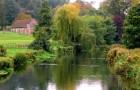 Пейзажный садовый стиль
