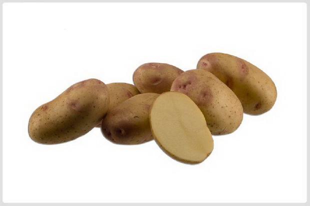 Сорт картофеля: Пикассо