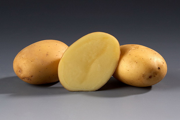 Сорт картофеля: Пиколо стар