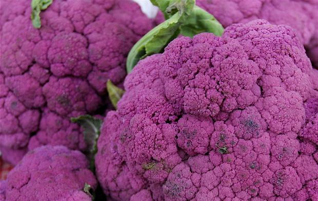 Сорт капусты цветной: Пурпурная