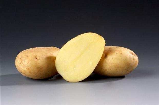 Сорт картофеля: Рамос