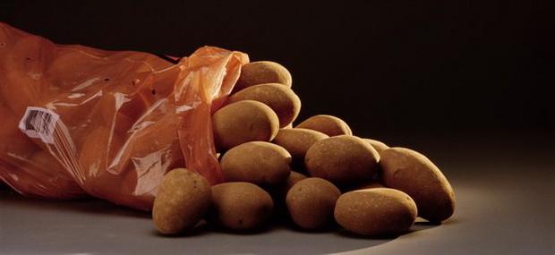 Сорт картофеля: Рамзай