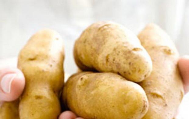 Сорт картофеля: Русская красавица