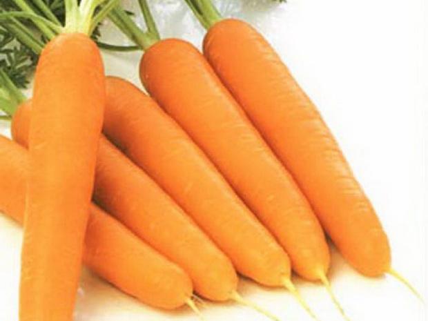 Сорт моркови: Садко