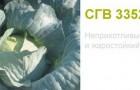 Сорт капусты белокочанной: Сг 3352 f1