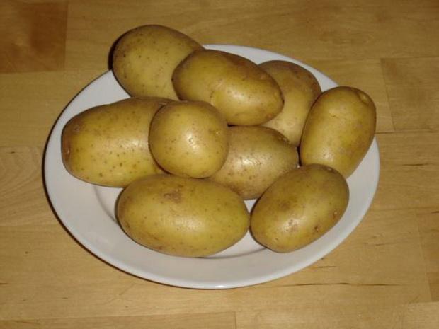 Сорт картофеля: Солнышко