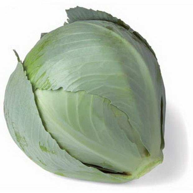 Сорт капусты белокочанной: Сторема   f1