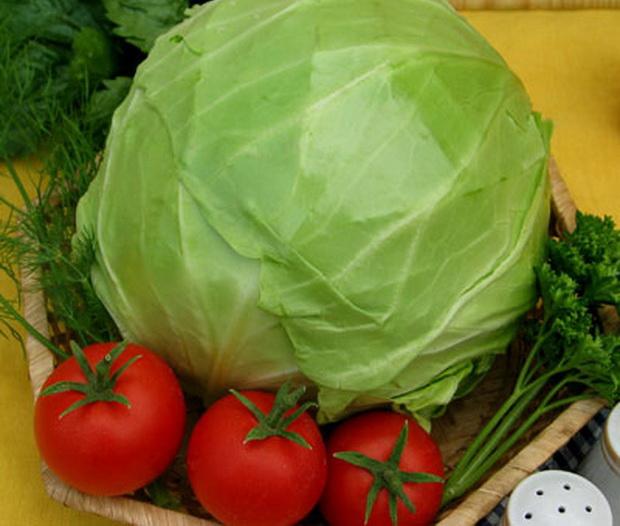 Сорт капусты белокочанной: Стряпуха   f1