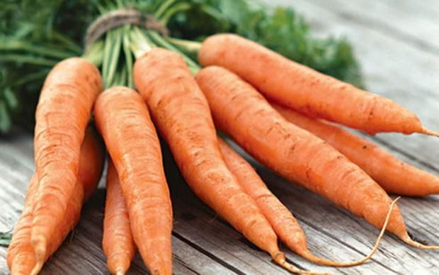 Сорт моркови: Суражевская 1