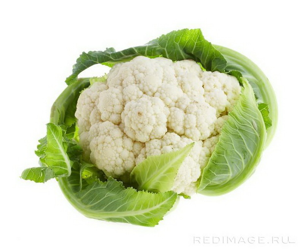 Сорт капусты цветной: Целеритас   f1