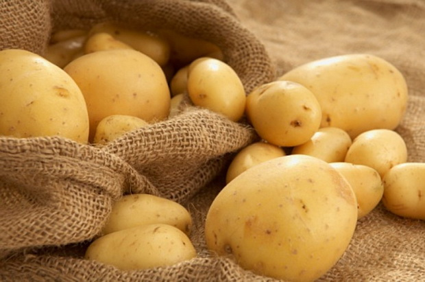 Сорт картофеля: Танай