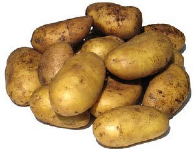 Сорт картофеля: Уладар