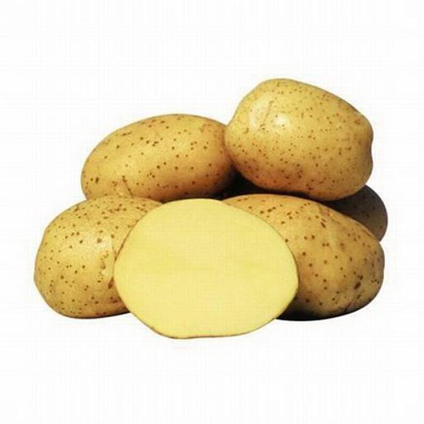 Сорт картофеля: Винета