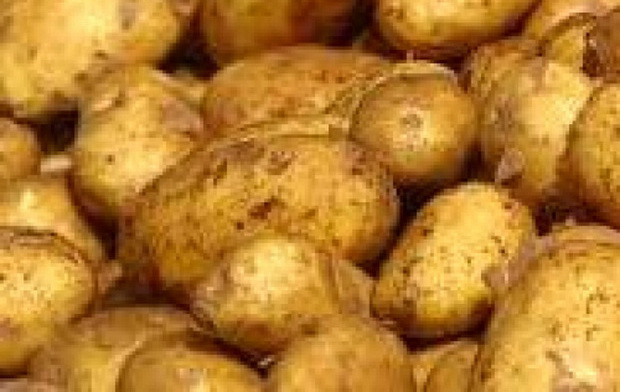 Сорт картофеля: Вр 808