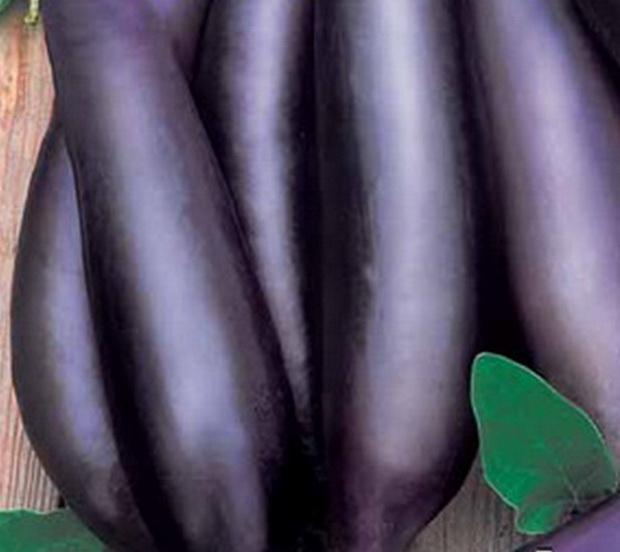 Сорт баклажана: Ятаган   f1