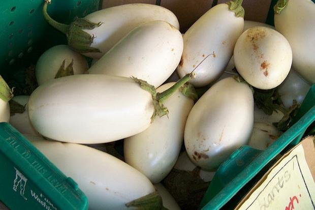 Сорт баклажана: Яйцевидный