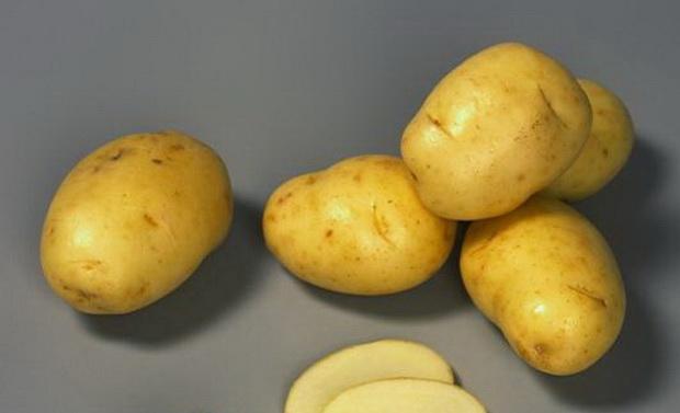 Сорт картофеля: Жанна