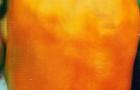Сорт перца сладкого: Золотой слиток