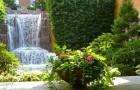 Зрелый сад