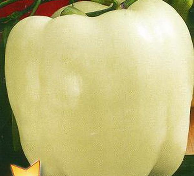 Сорт перца сладкого: Звезда востока белая   f1