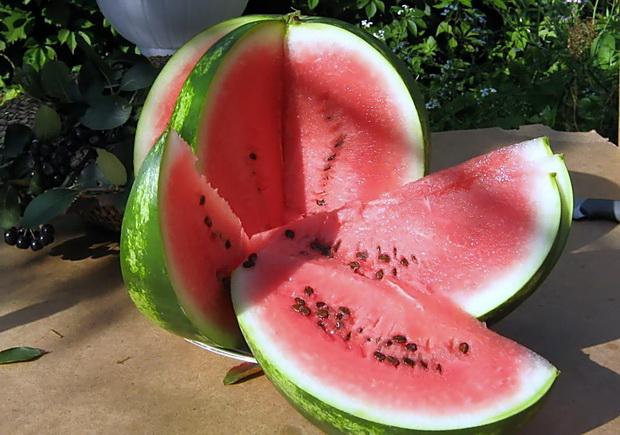 Сорт арбуза: Атаманский