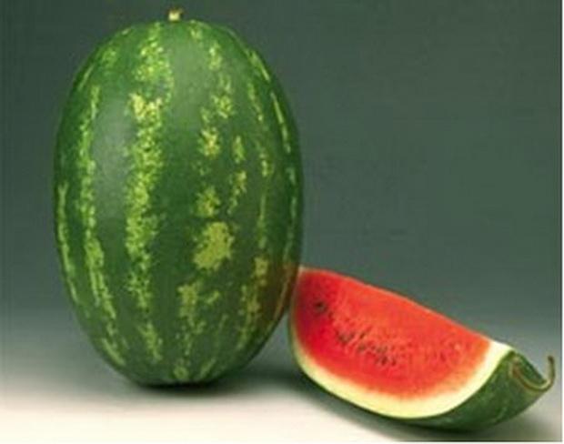 Сорт арбуза: Фарао   f1