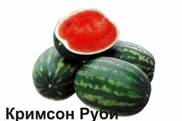 Сорт арбуза: Кримсон руби   f1